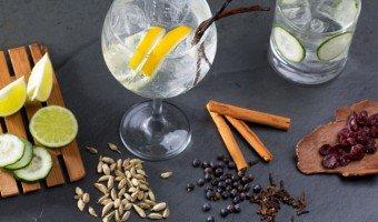 Botanicals Gin